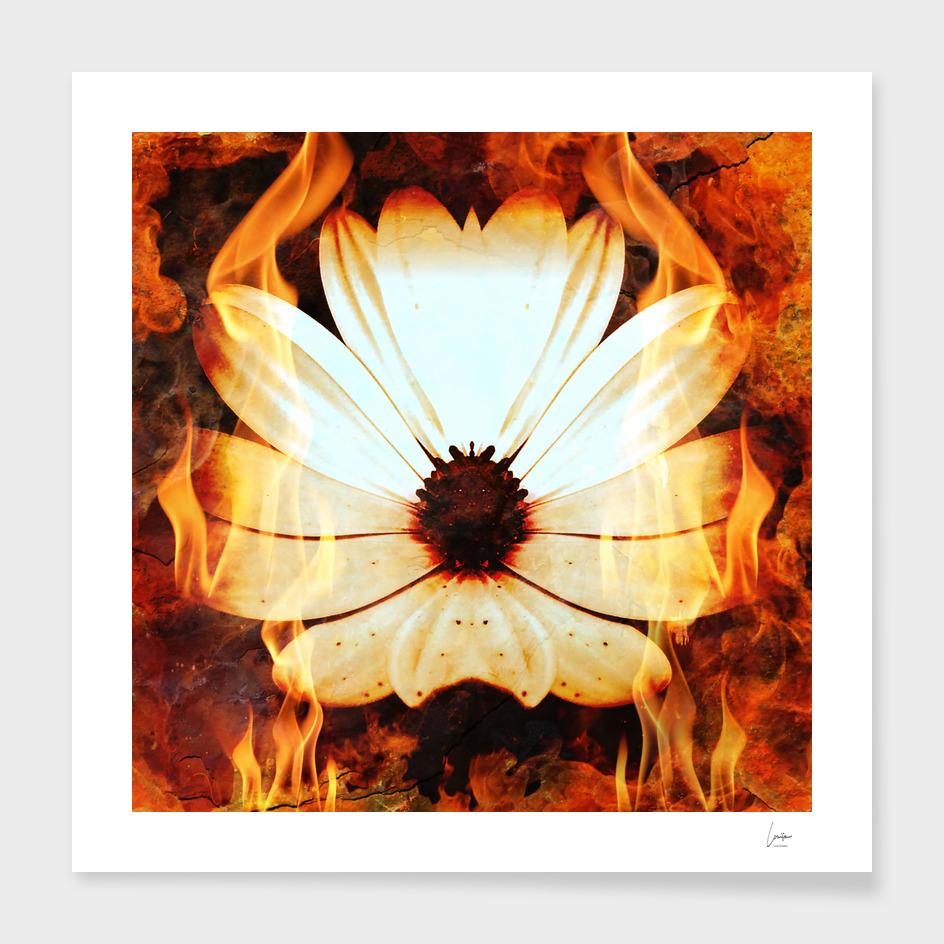 Her Inner Fire