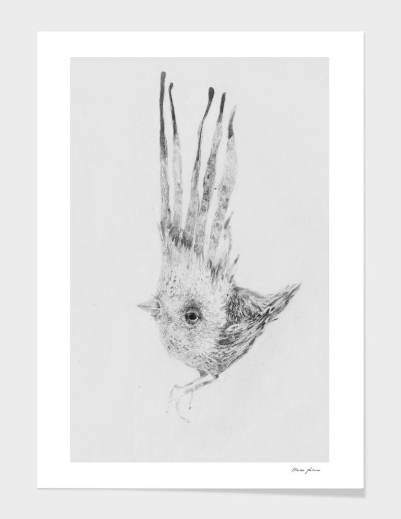 Bird_I_I