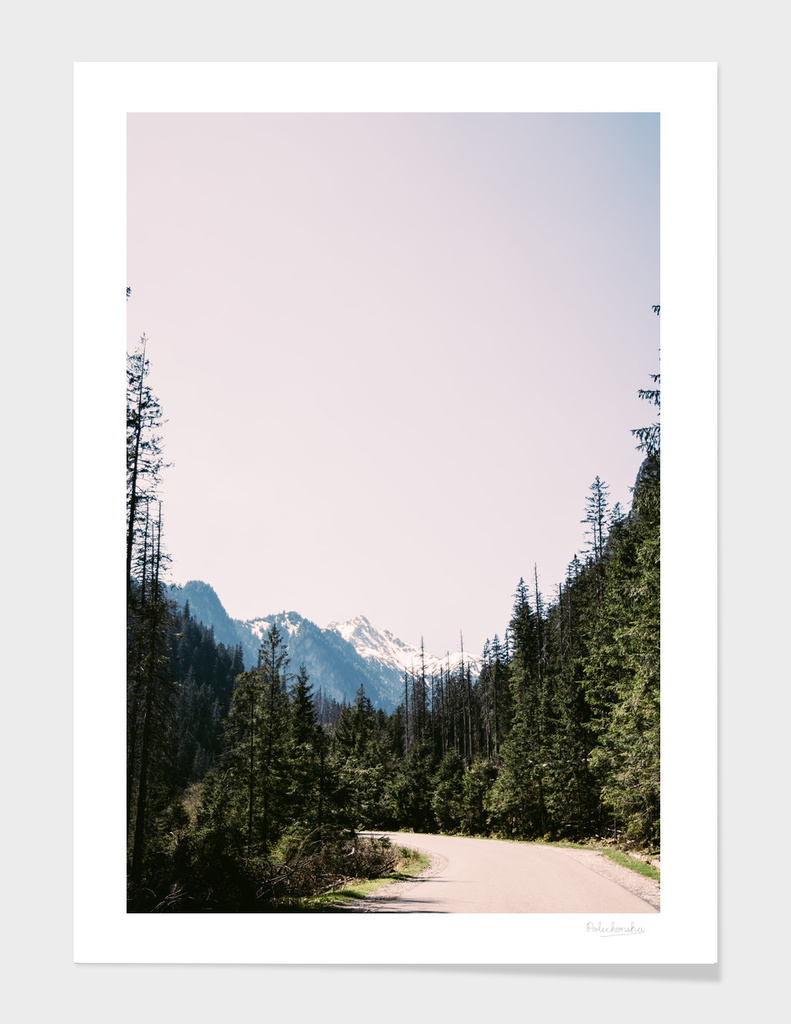 Spring Mountain Road