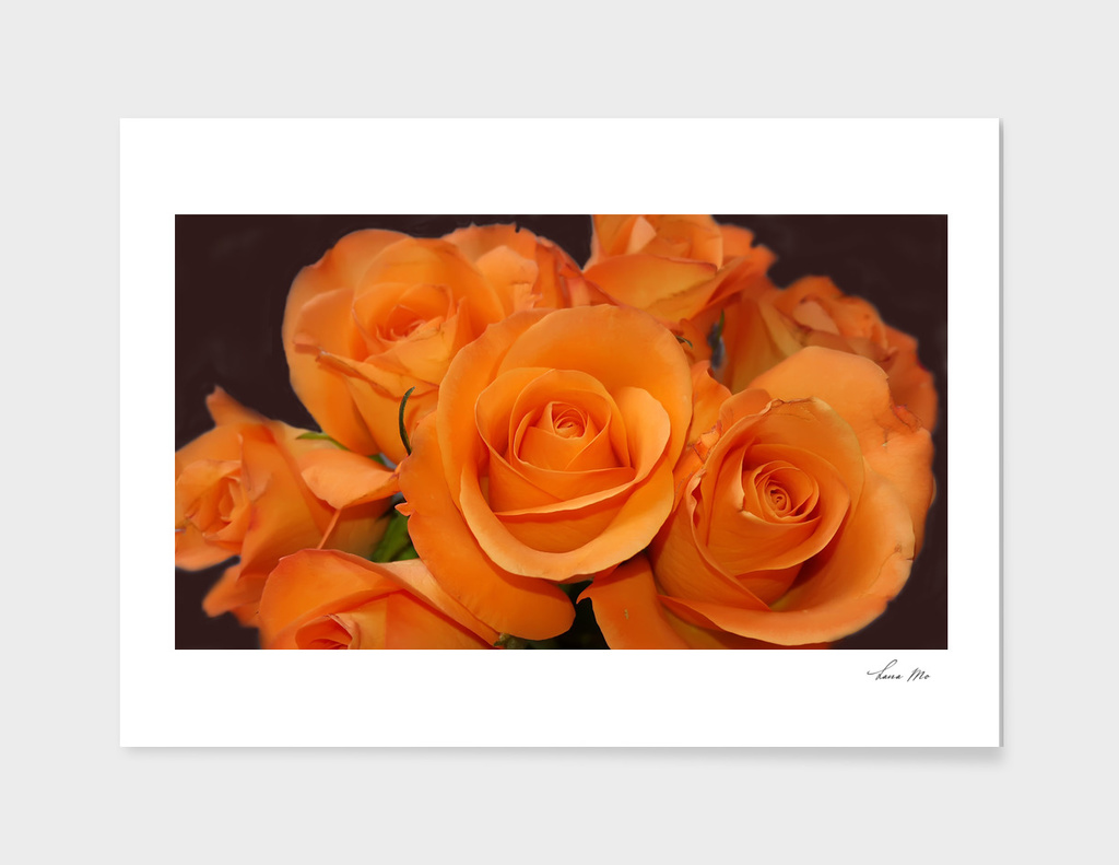 Bouqet orange roses