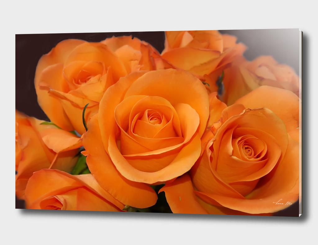 Bouqet orange roses