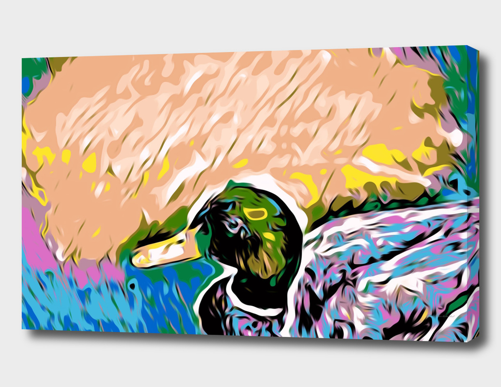 mallard duck with colorful abstract background