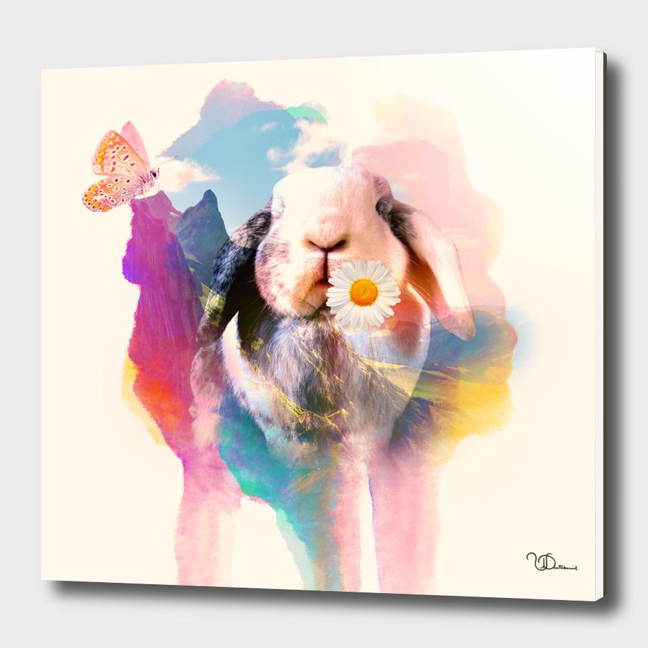 Pink rabbit_double exposure
