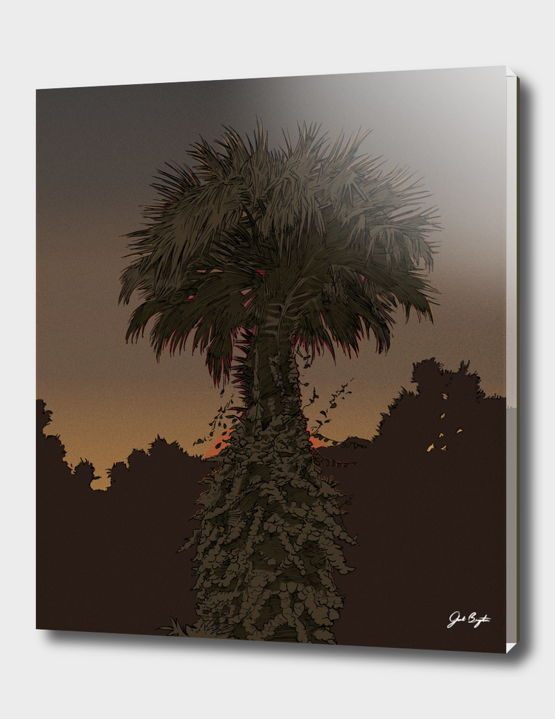 In the Palms