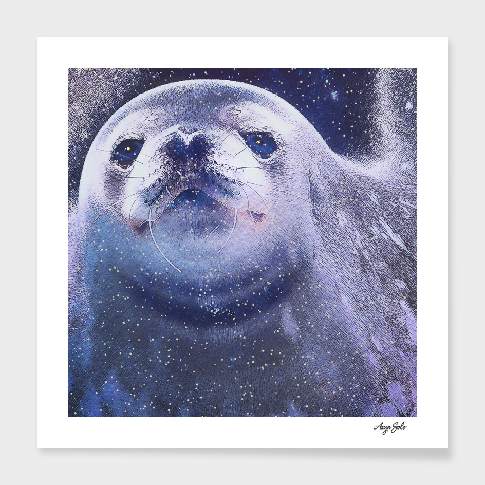 Space Fur seal