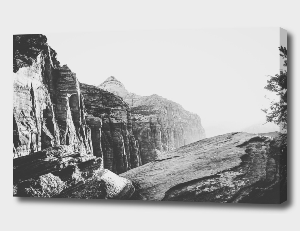 mountain view at Zion national park, USA in black and white