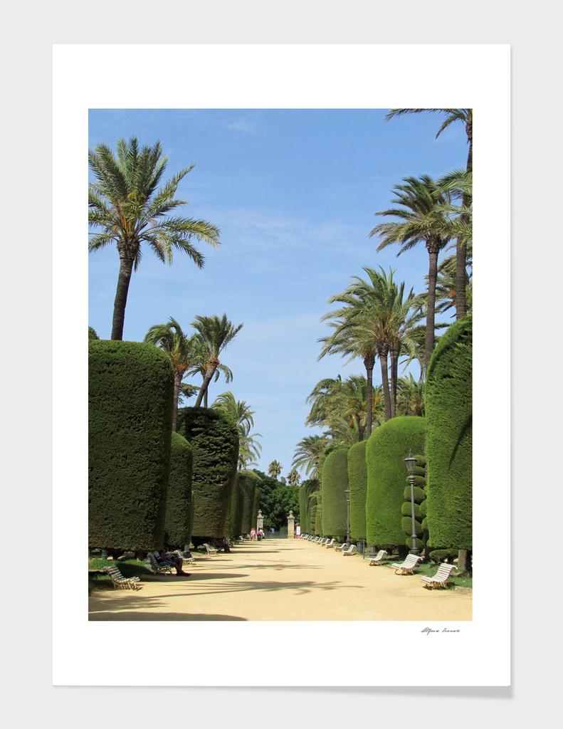 Urban Park in Spain