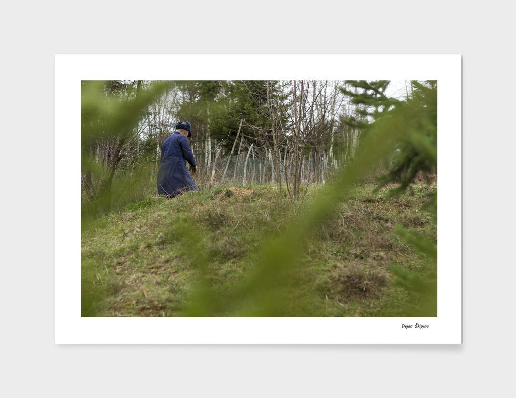 Blue man in green fields