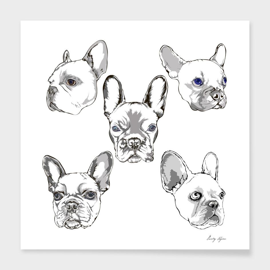 French bulldog portrait sketch hand drawing set