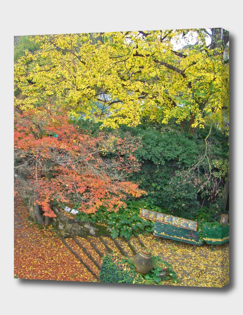 Old autumn italian garden in Florence