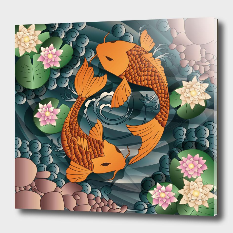 Koi fish swimming