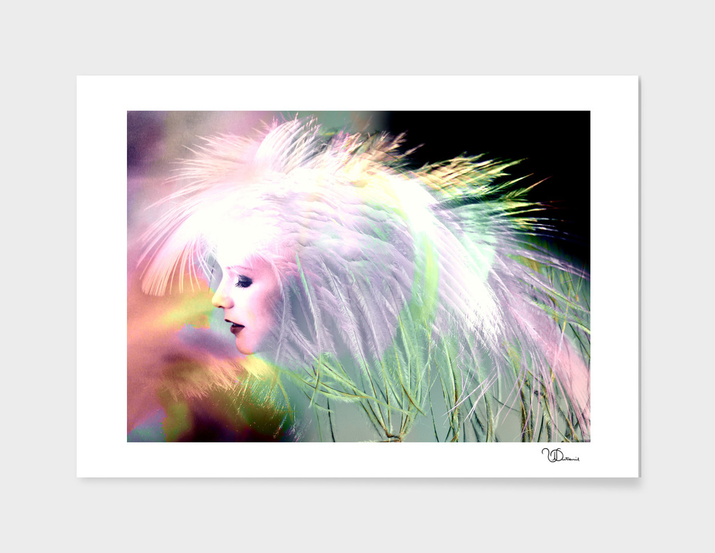 The Song of the Swan_colorful