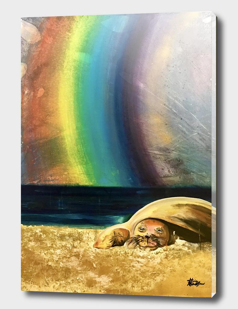 Sleepy Seal on the Beach