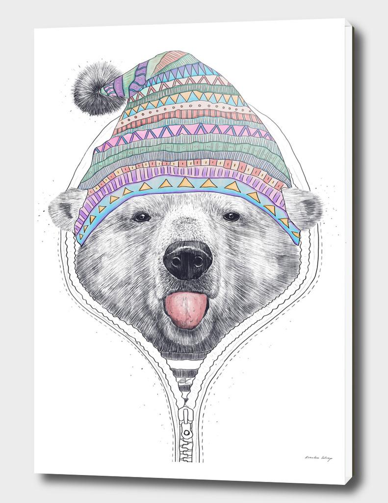 The Bear in a hood