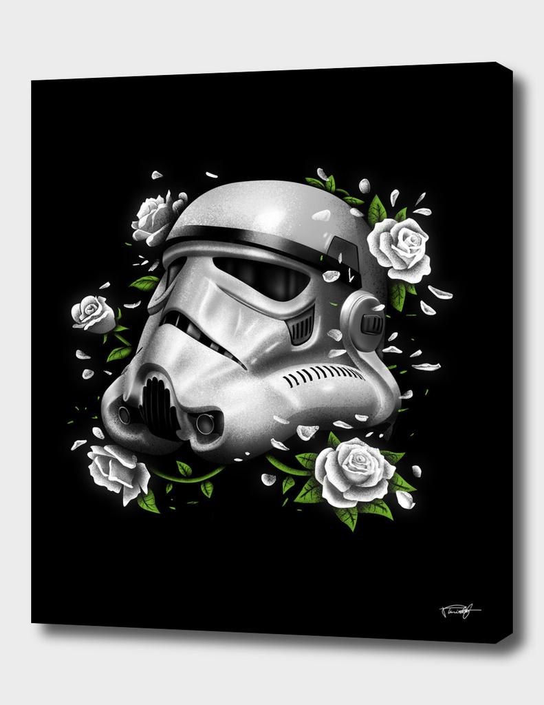 Phantom of the Empire Trooper