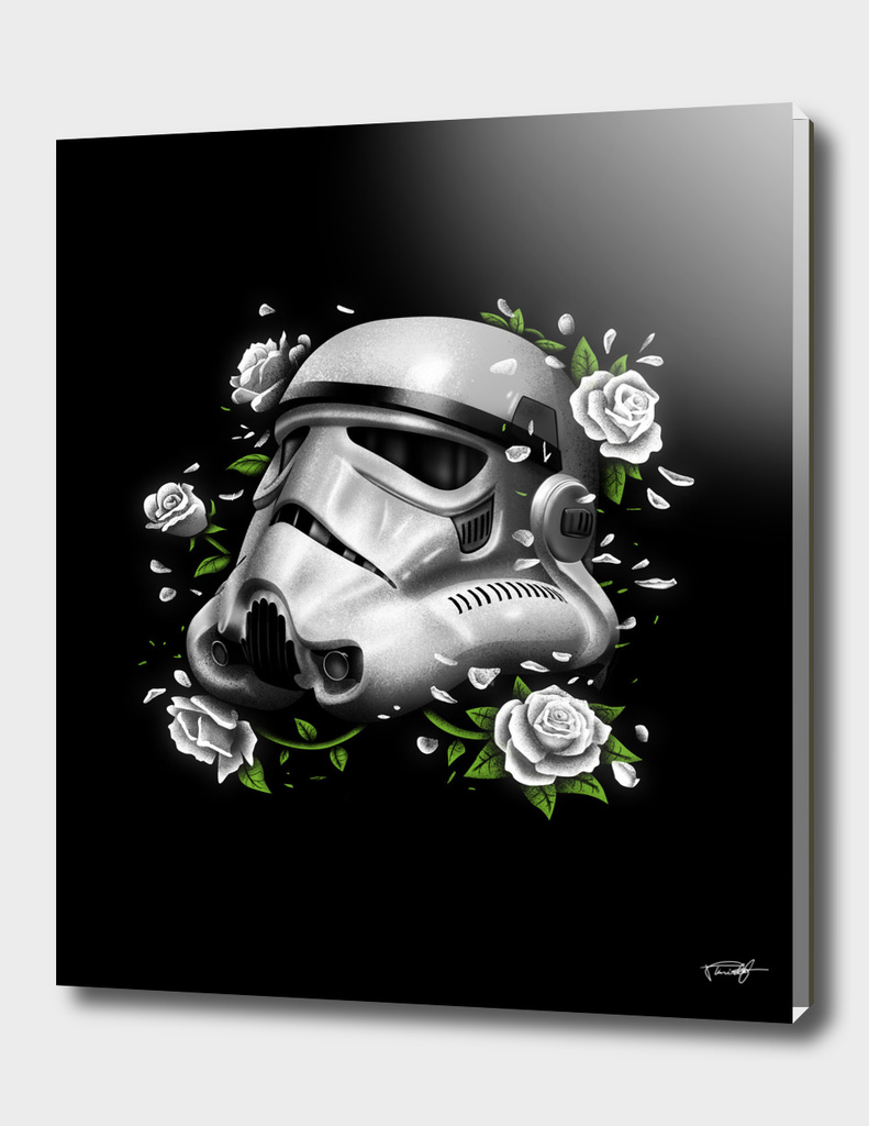 Phantom of the Empire Trooper
