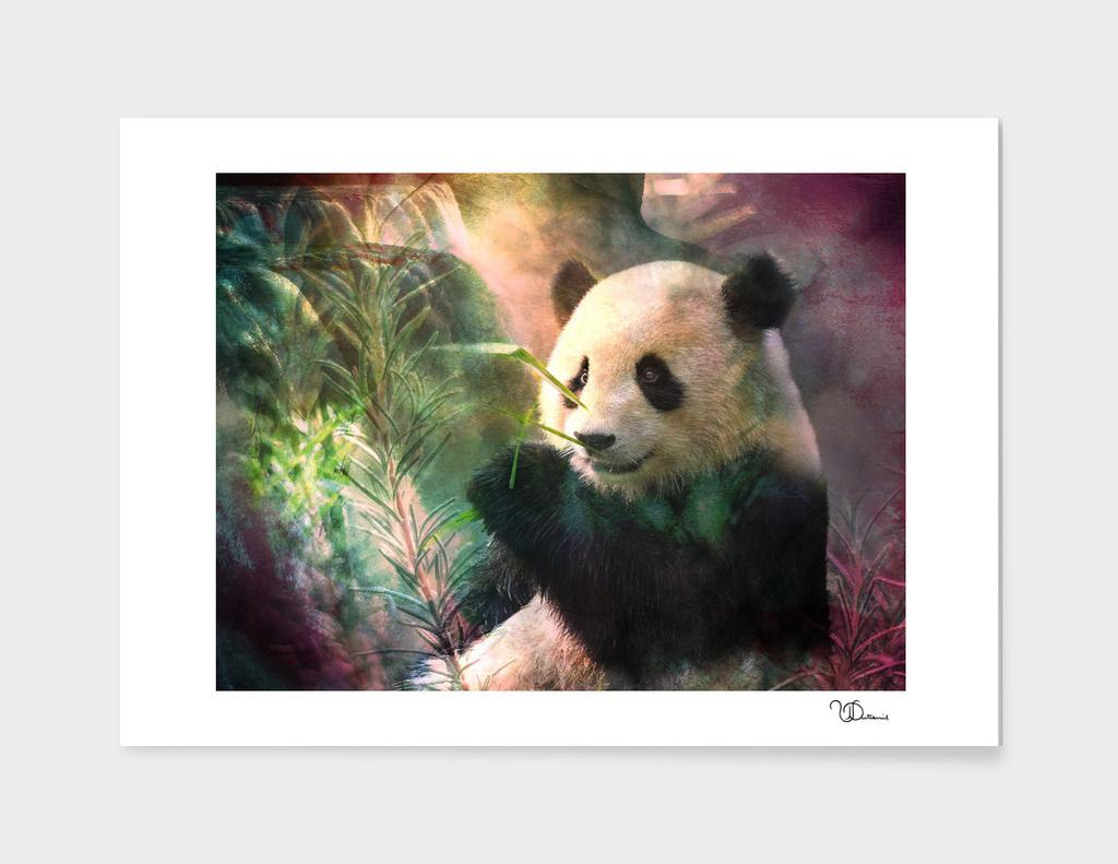 Sanctuaire du grand panda
