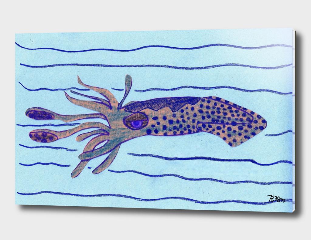 Camouflaging Squid