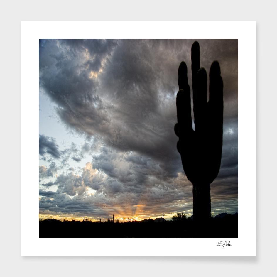 AZ sunrise_1