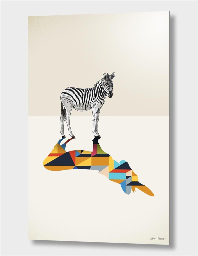 Walking Shadow, Zebra
