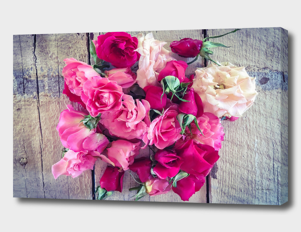 red and pink rose on the old wooden table