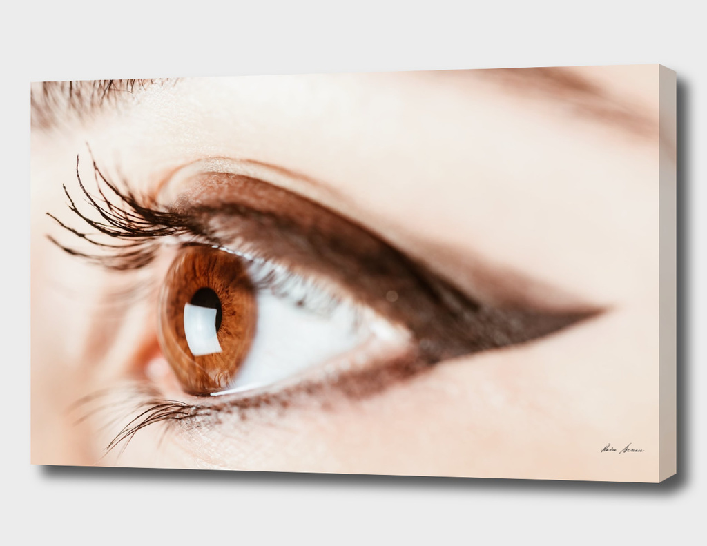Woman Eye With Makeup And Long Eyelashes