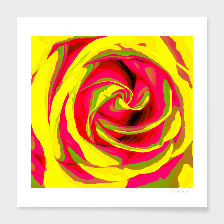red and yellow rose abstract background