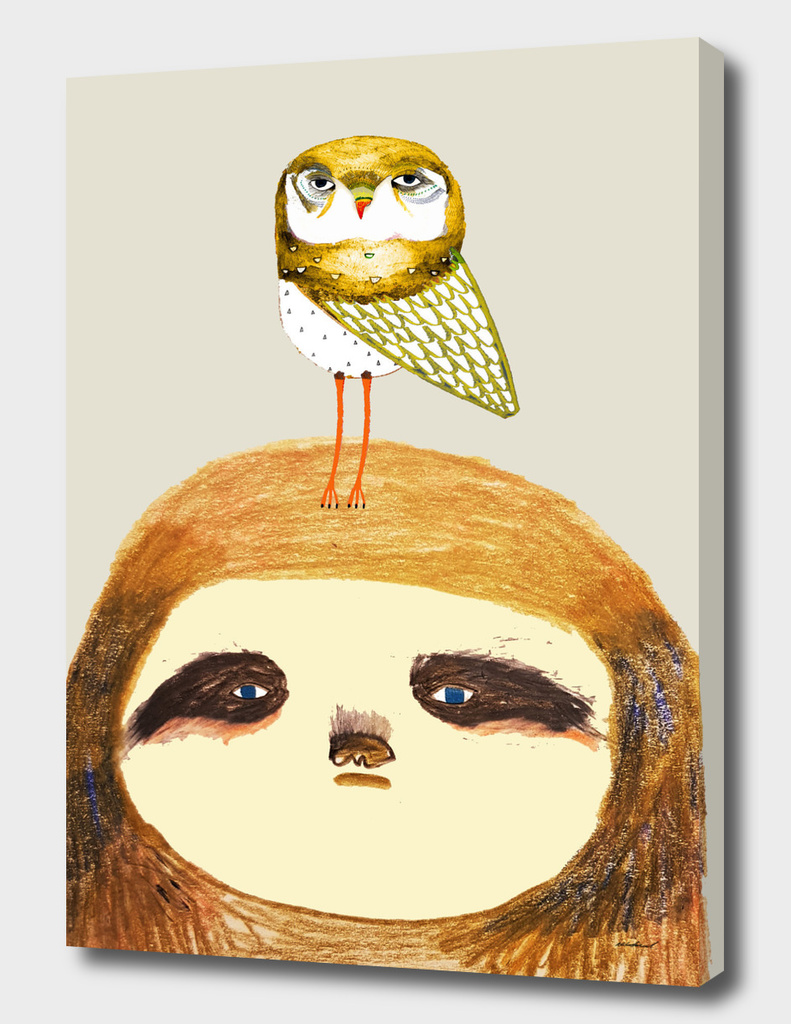 sloth and owl