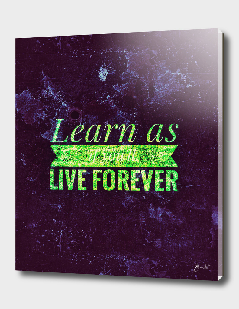 Learn as if you'll live forever