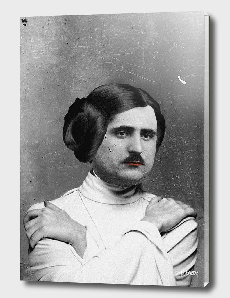 Princess Leia Organa Family Portrait