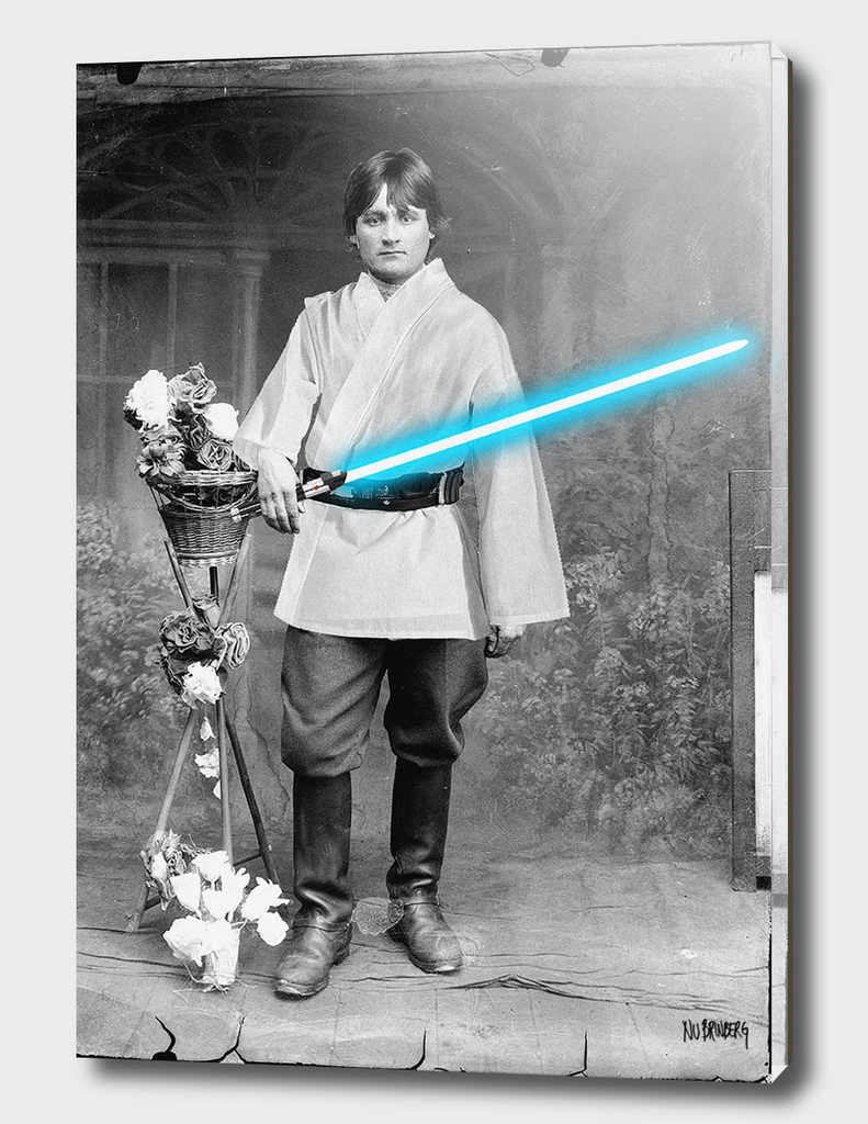 Luke Skywalker Family Portrait