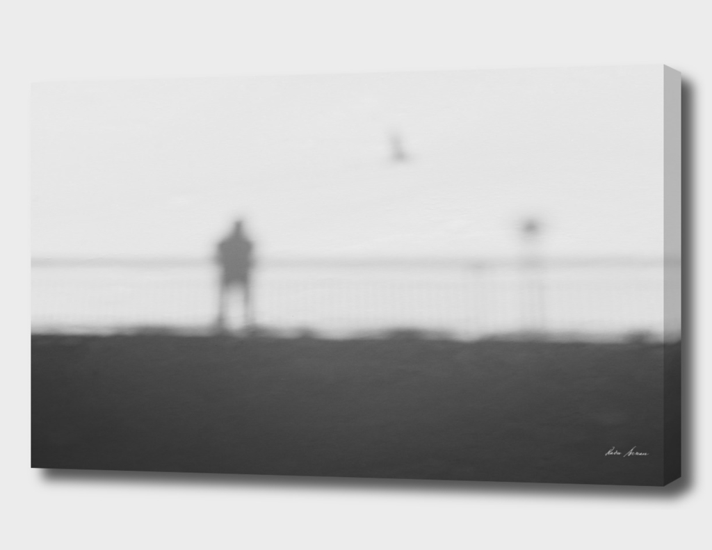 Man On A Bridge With Flying Bird Abstract Shadow On Snow