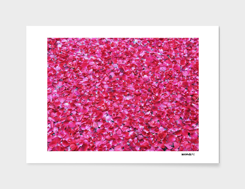BoomGoo's Indian Petals fountain (painterly)