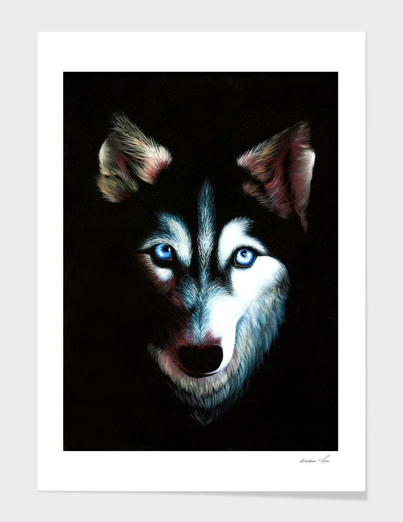 husky with human eyes