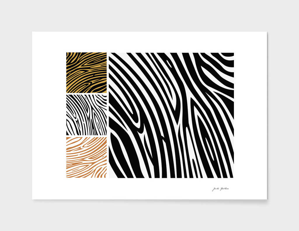 New safari Zebra art : black and white 70s