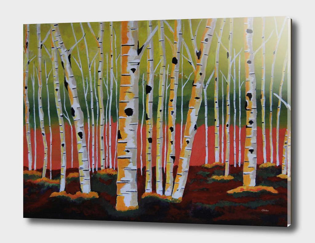 The Birch Forest