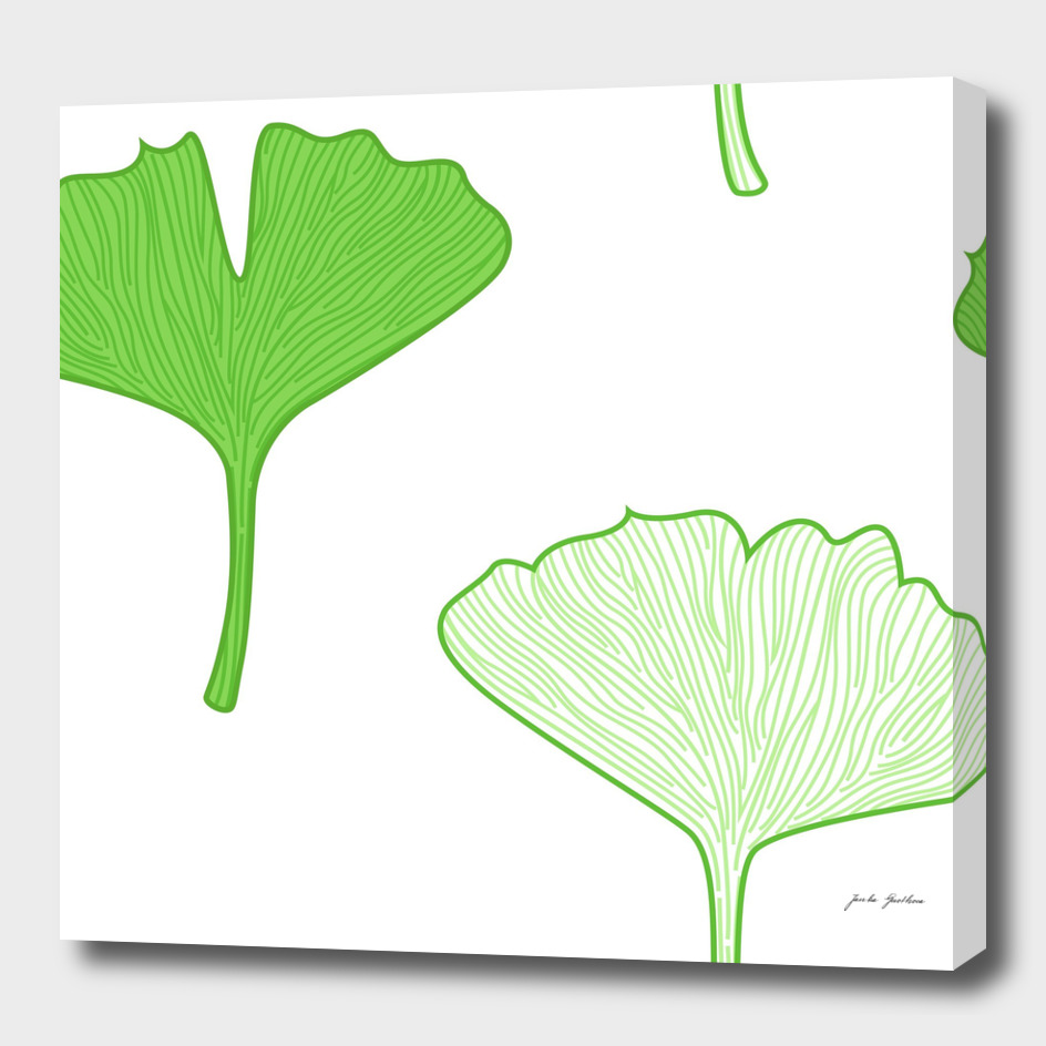 Gingko green art collection