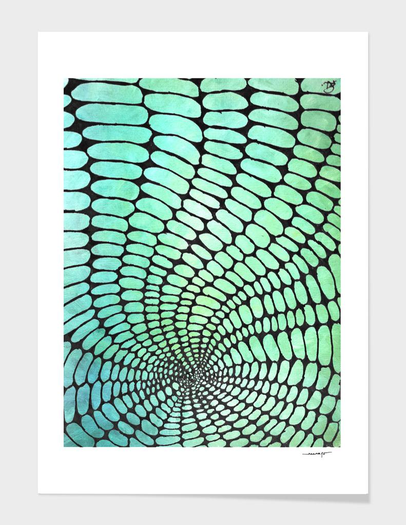 Oval Illusion