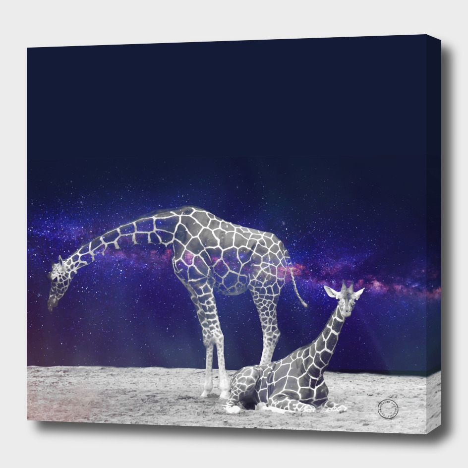 Giraffes on The Moon