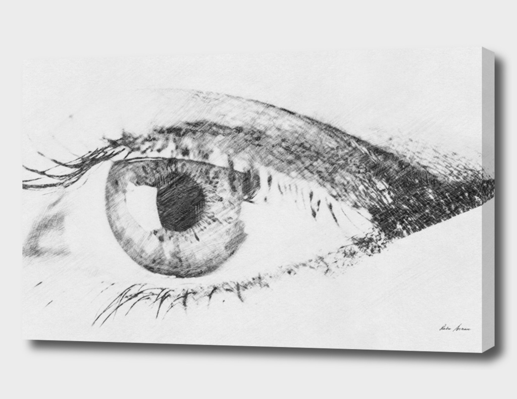 Black And White Sketch Of Human Eye