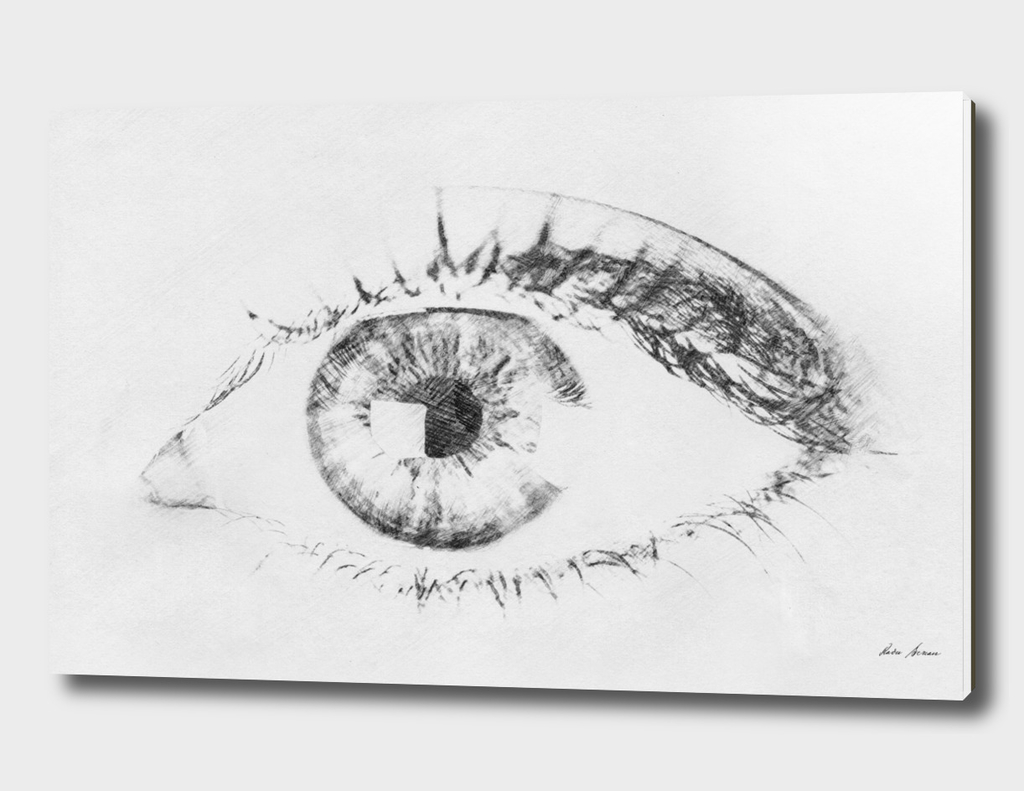 Black And White Sketch Of Human Eye