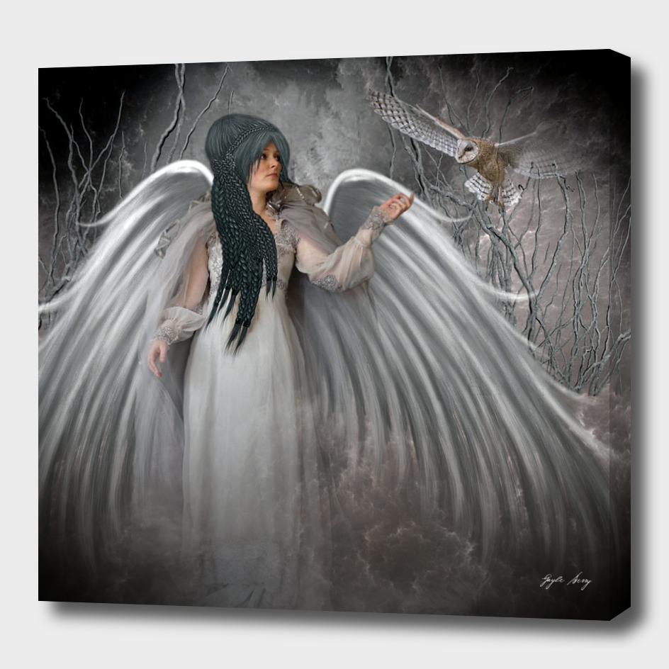 ANGEL'S OWL