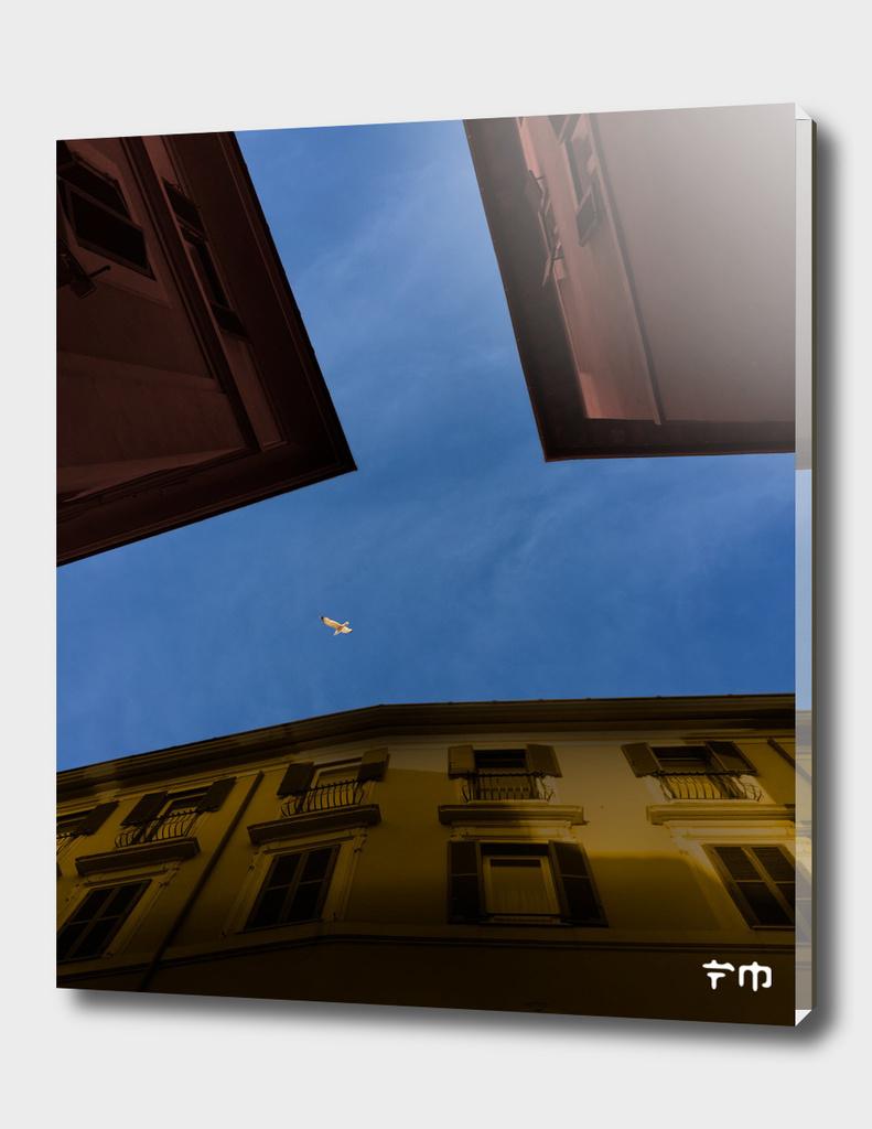 urban skies #07