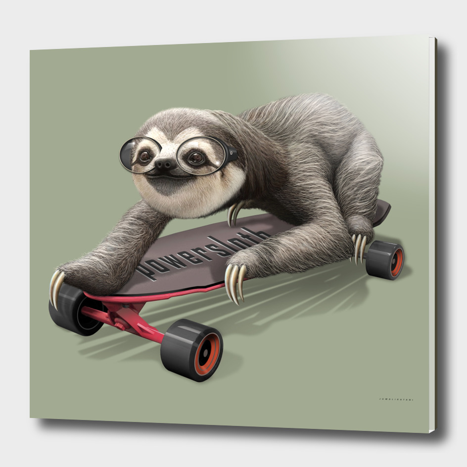 SLOTH ON SKATEBOARD