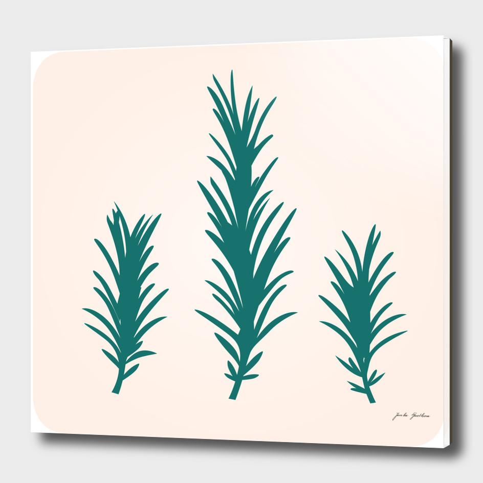 Stylish hand drawn Rosemary / green Edition