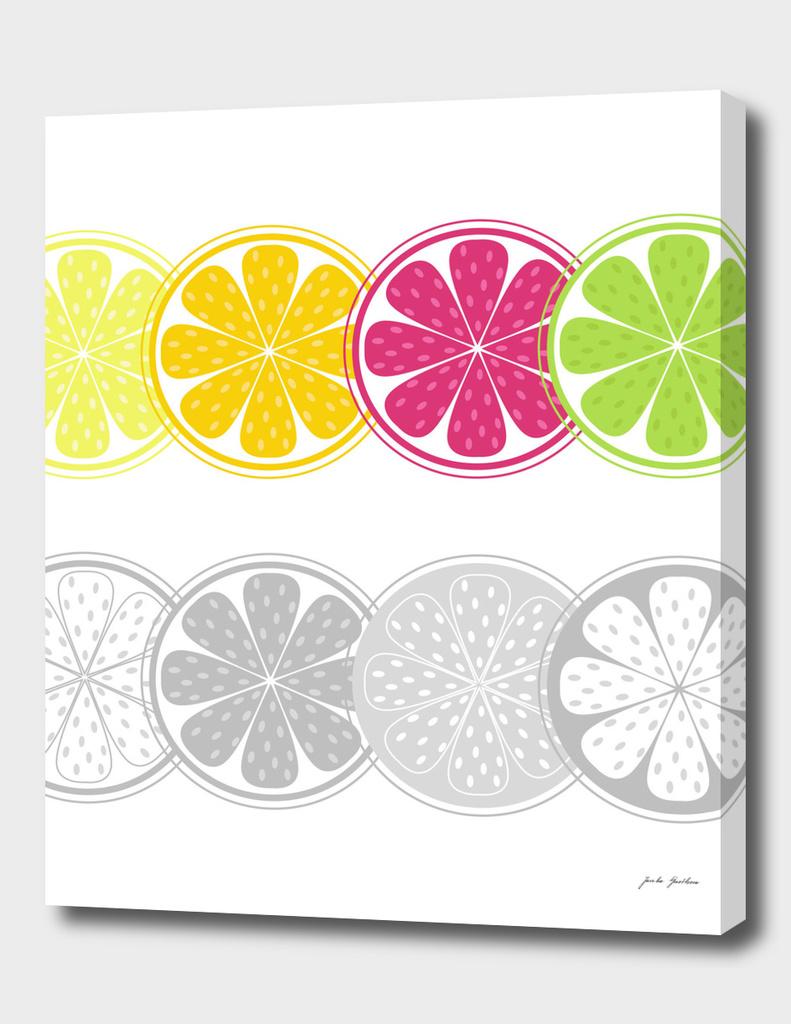 Grey citrus : on white