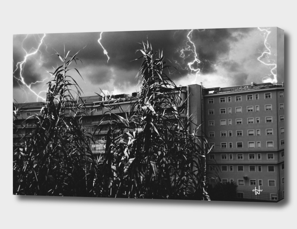 Thunderstorm in Tivoli