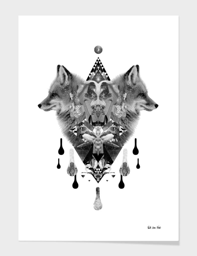 Foxy univers
