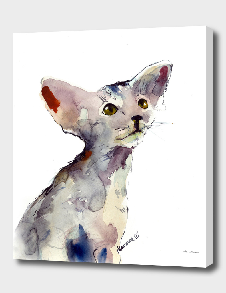 Oriental Kitten watercolor painting