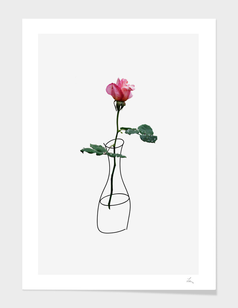 rose in the vase